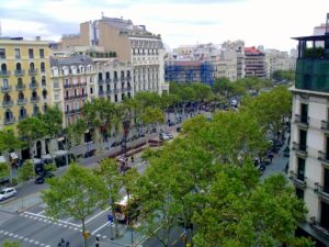 Great places to take your dog in Barcelona 8 Great places to take your dog in Barcelona